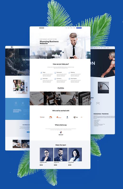 website design graphic showing 3 designs